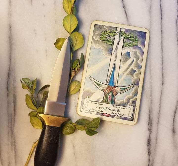 Enchanted Paths Daily Tarot